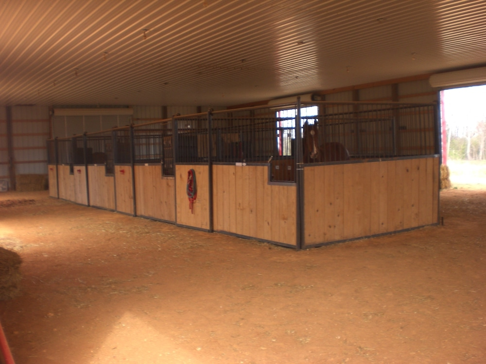 Equestrian | Stable-9