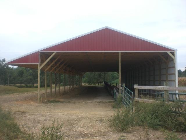Farm | Livestock-5